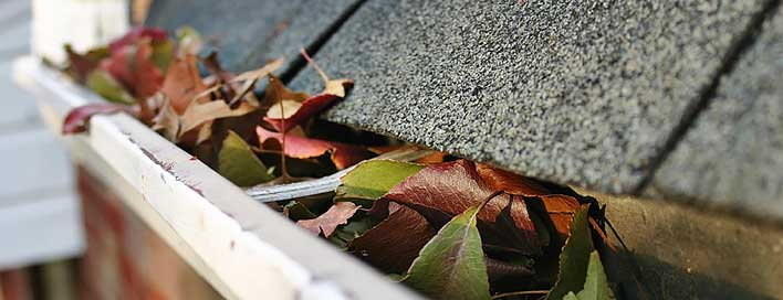 Nj gutter cleaning service princeton gutters mercer county are your gutters jammed with leaves bird nests or other debris while you solutioingenieria Images